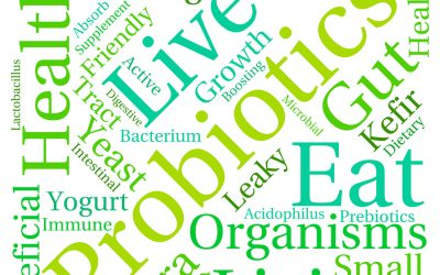 What type of probiotics should you take on the GAPS Diet?